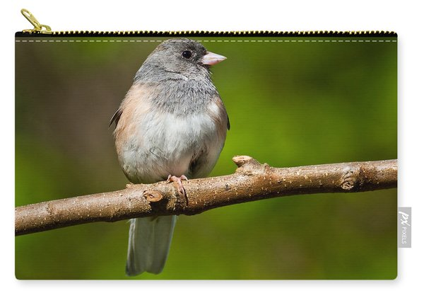 Dark Eyed Junco Perched On A Branch Carry-all Pouch