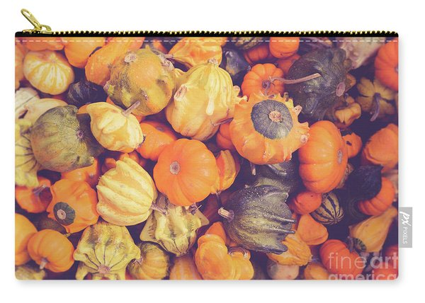 Decorative Squash And Gourds Carry-all Pouch