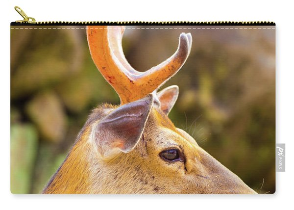 Deer Head Antlers Closeup Face Side Nara Japan Carry-all Pouch