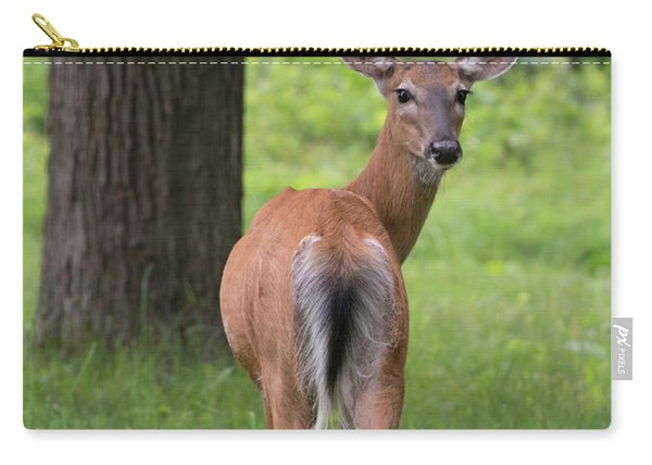 Deer Looking Back Carry-all Pouch