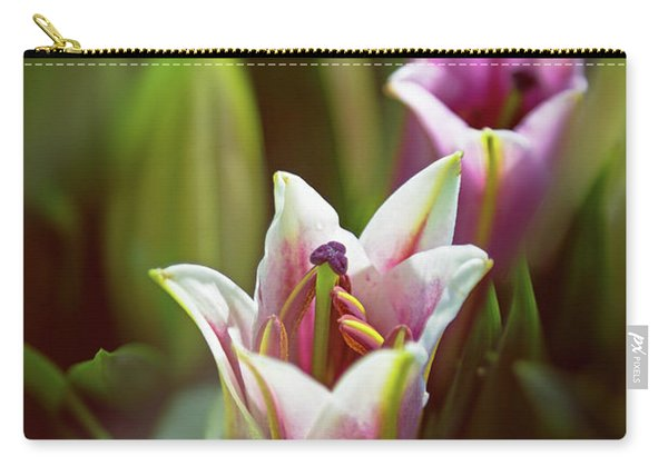 Detail Of Pink And White Oriental Lilies In Sunlight. Carry-all Pouch