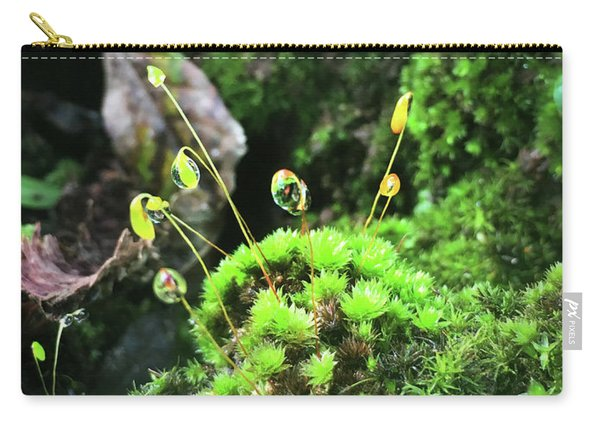 Dew Drops On Moss And Sprouts In The Sun Carry-all Pouch