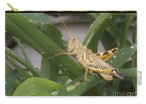 Differential Grasshopper Amid Water Drops    July    Indiana Carry-all Pouch