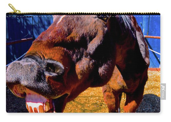 Do You Have A Treat For Me? Carry-all Pouch