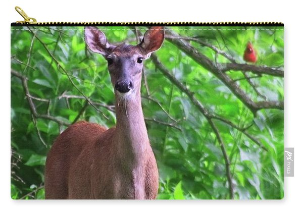 Doe And Cardinal Carry-all Pouch