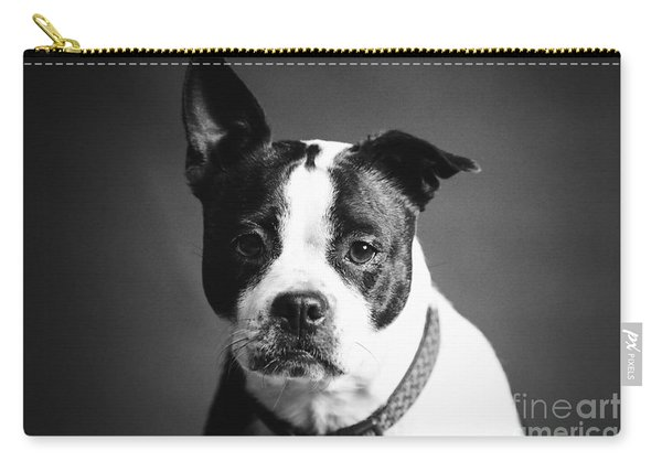 Dog - Monochrome 1 Carry-all Pouch