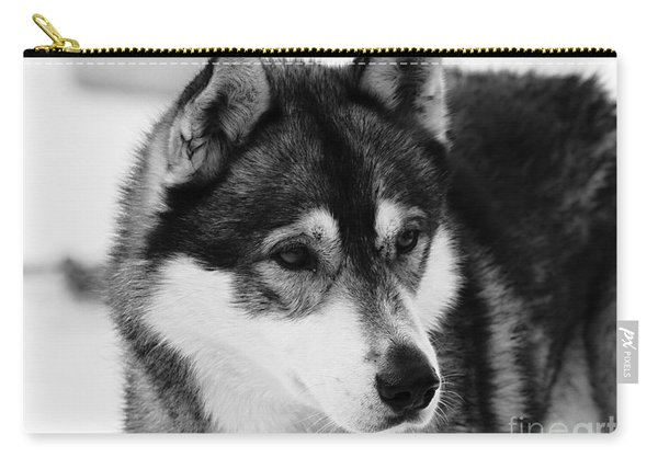 Dog - Monochrome 3 Carry-all Pouch