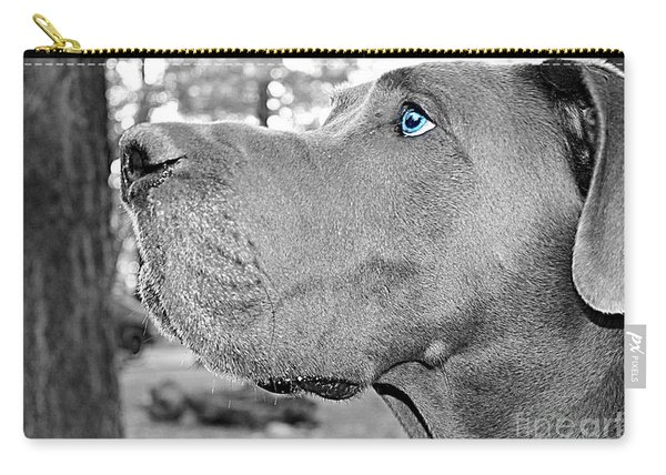 Dogus Carry-all Pouch