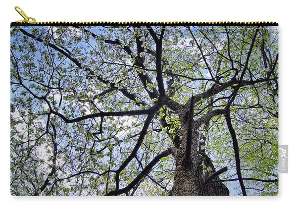 Dogwood Canopy Carry-all Pouch