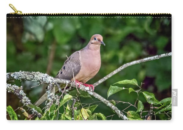 Dove On A Branch Carry-all Pouch