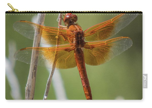Dragonfly 10 Carry-all Pouch