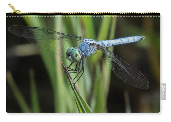 Dragonfly 13 Carry-all Pouch