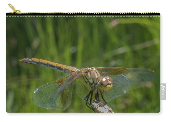 Dragonfly 7 Carry-all Pouch