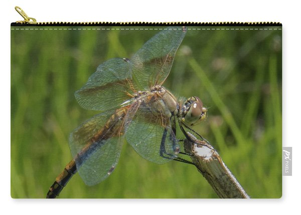 Dragonfly 8 Carry-all Pouch
