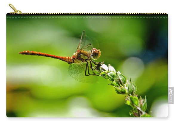 Dragonfly Sitting On Flower Carry-all Pouch