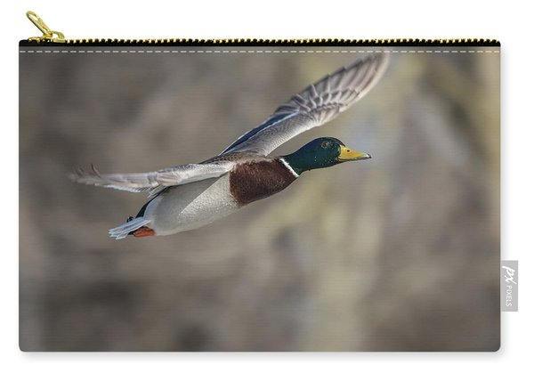 Drake Mallard 2018-1 Carry-all Pouch