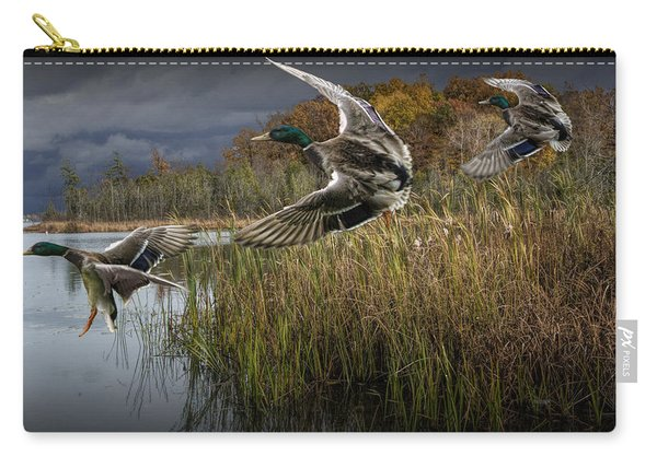 Drake Mallard Ducks Coming In For A Landing Carry-all Pouch