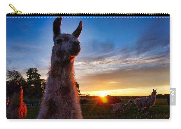 Drama Llamas Carry-all Pouch