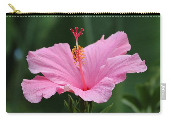 Dreaming Of The Tropics Carry-all Pouch