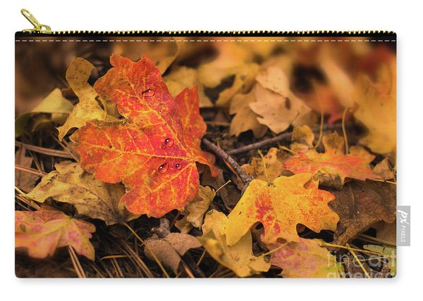 Carry-all Pouch featuring the photograph Droplets by Susan Warren