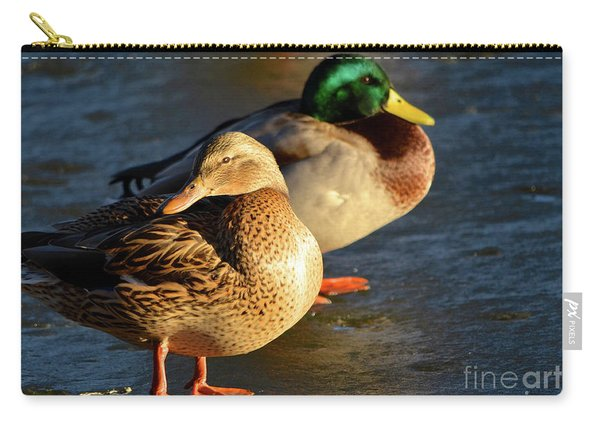 Duck Pair Sunbathing On Frozen Lake Carry-all Pouch