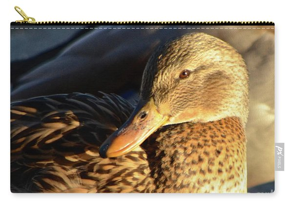 Duck Sunbathing Carry-all Pouch