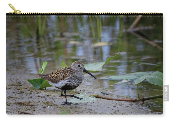 Dunlin 2 Carry-all Pouch