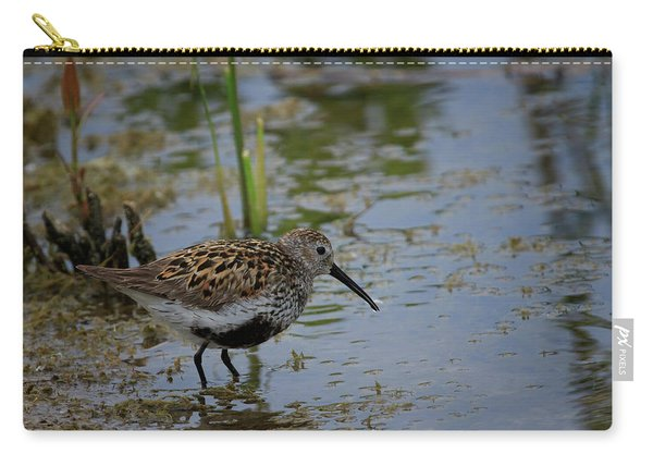 Dunlin 3 Carry-all Pouch