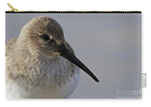 Dunlin Sandpiper Portrait Carry-all Pouch