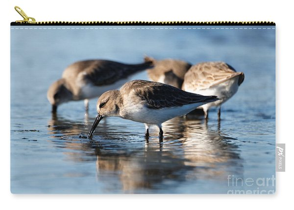 Dunlin Sandpipers At The Shoreline Carry-all Pouch
