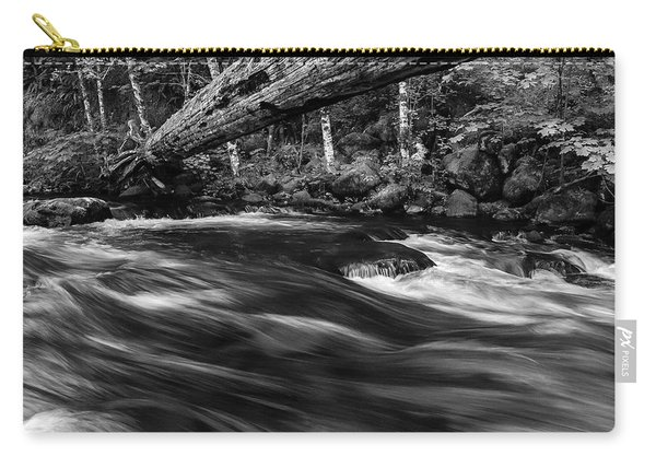 Eagle Creek  Carry-all Pouch
