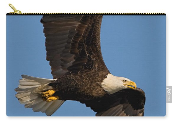 Eagle In Sunlight Carry-all Pouch
