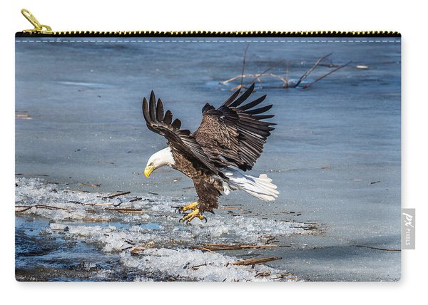 Eagle Landing Carry-all Pouch