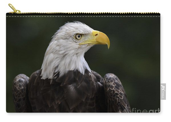 Eagle Profile 2 Carry-all Pouch
