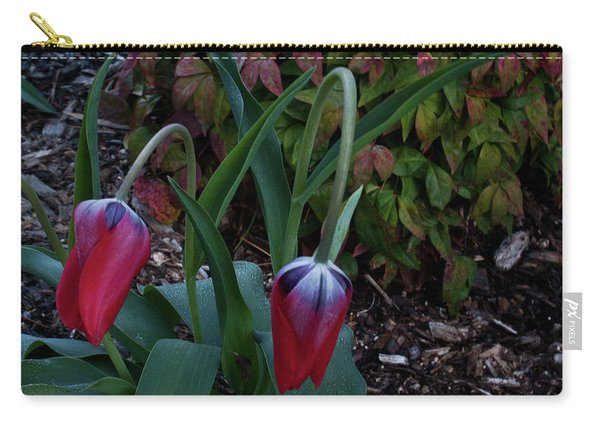 Early Morning Nodding Tulips Carry-all Pouch