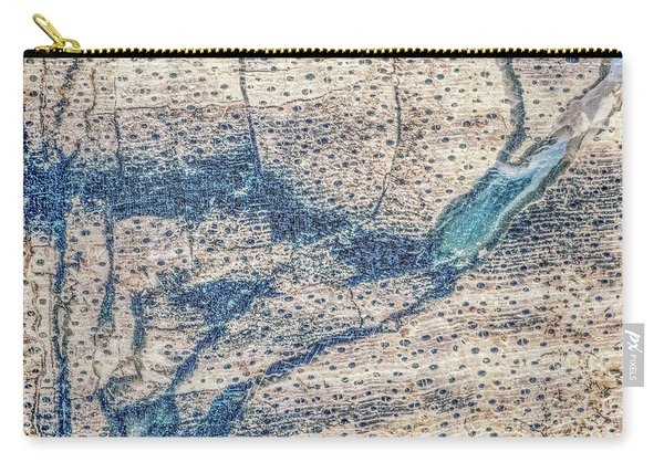 Earth Portrait 001-118 Carry-all Pouch