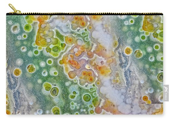 Earth Portrait 277 Carry-all Pouch