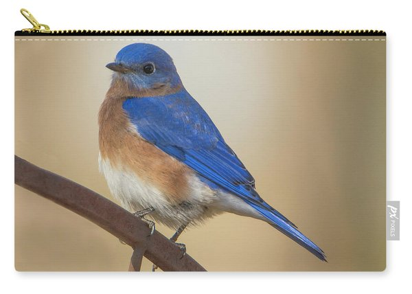 Eastern Blue Bird Male Carry-all Pouch