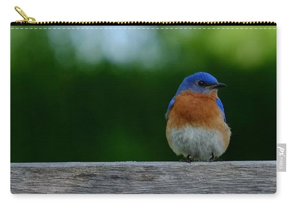 Eastern Bluebird - Male Carry-all Pouch