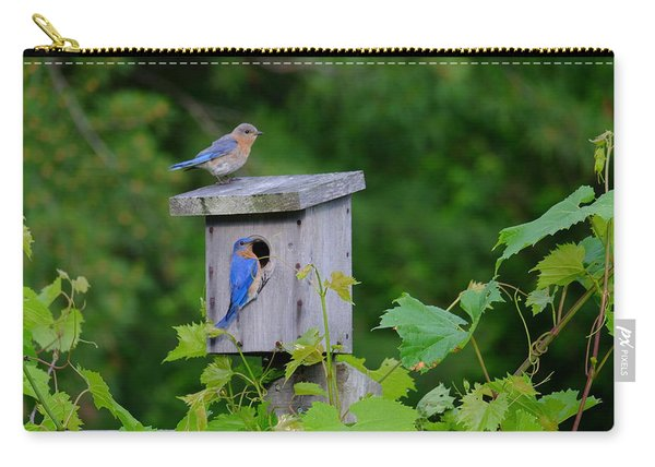 Eastern Bluebird Pair Carry-all Pouch
