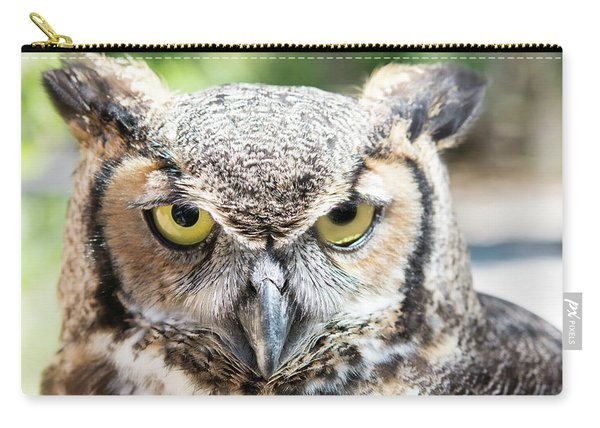 Eastern Screech Owl Portrait Carry-all Pouch