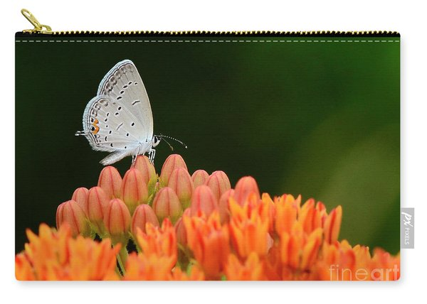 Eastern Tailed Blue On Butterfly Weed Carry-all Pouch