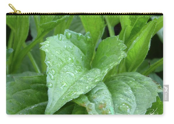 Echinacea After The Rain I Carry-all Pouch