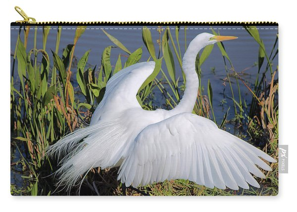 Egret Display Carry-all Pouch