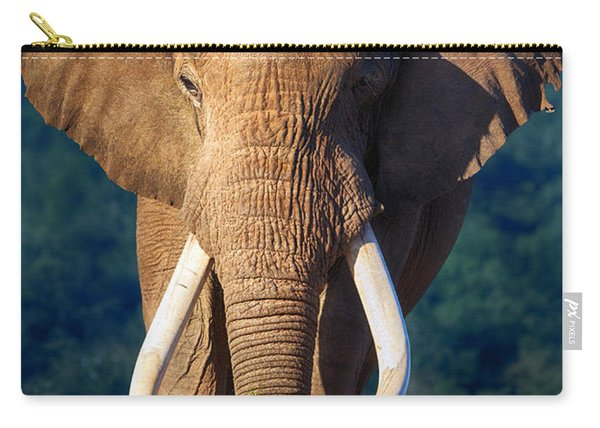 Elephant Approaching Carry-all Pouch