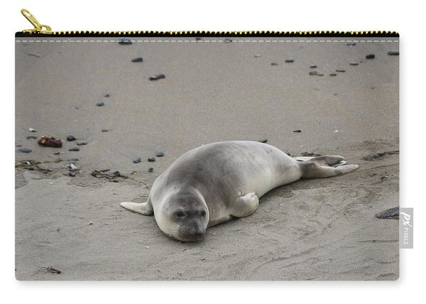 Carry-all Pouch featuring the photograph Elephant Seal - 2  by Christy Pooschke