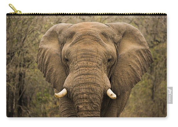 Elephant Watching Carry-all Pouch