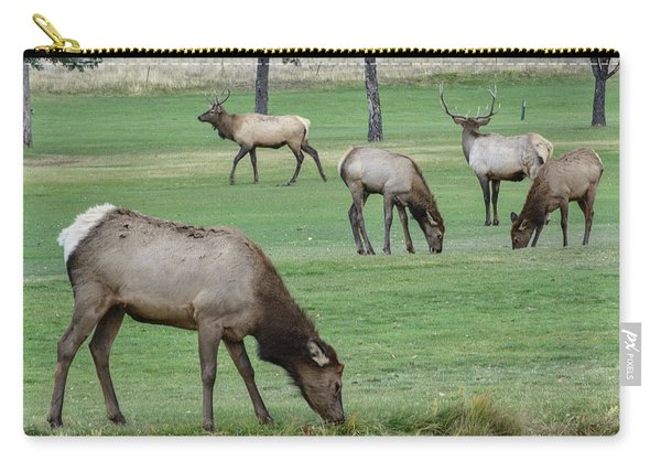 Elk On Golf Course Estes Park Colorado Carry-all Pouch