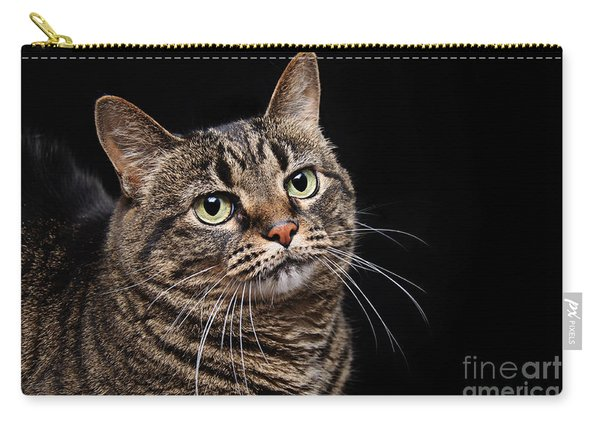 Emmy The Cat Ponder Carry-all Pouch