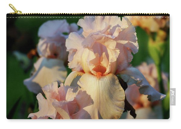 End Of Day Pink Irises 6702 H_2 Carry-all Pouch